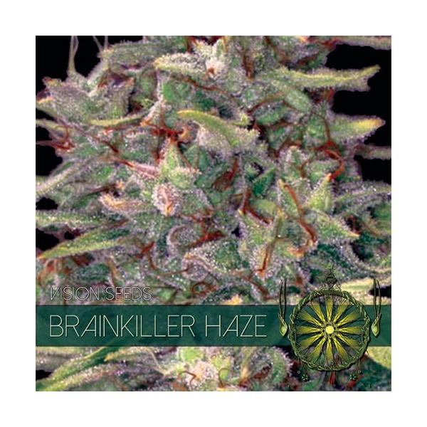 Brainkiller Haze fem