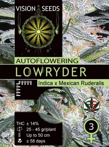 Lowryder Auto