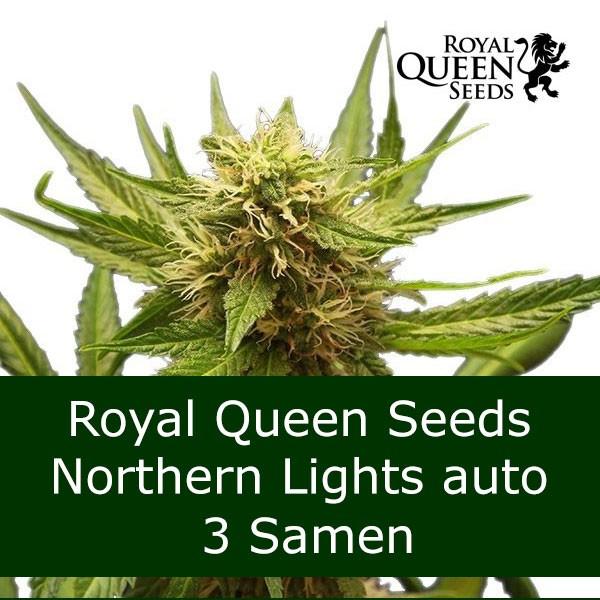 3 Seeds NL auto - RQS Bonus
