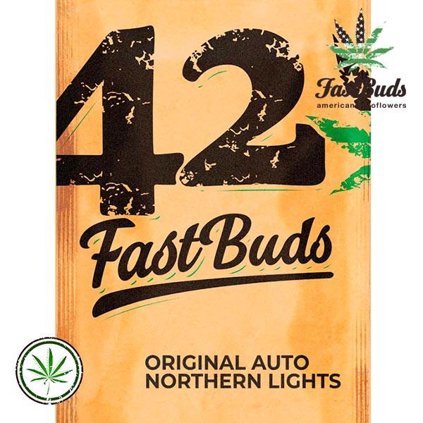 Original Auto Northern Lights