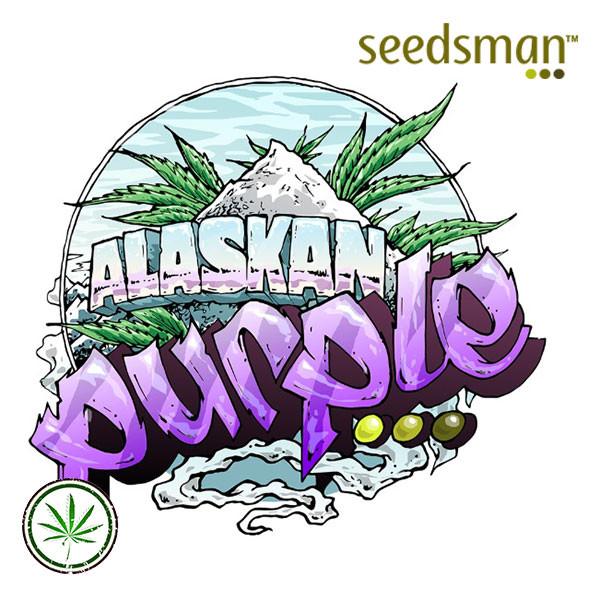 Alaskan Purple